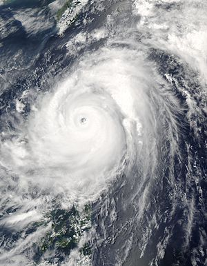 Typhoon Nida 18 may 2004 0450Z