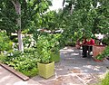 U.S. Botanic Garden in June (23713120621).jpg
