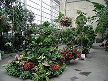US botanika ĝardeno 3.jpg