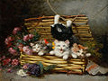 Un panier plein de chats.jpg