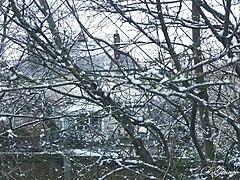 Undercover Winter House.jpg