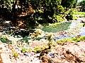 Une rivière polluée qui porte atteinte à la santé humaine.jpg