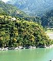 Untouched flora of Parvati River.jpg