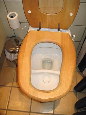 Urine diversion - Urine diverting flush toilet at a household in Stockholm, Sweden (company: Dubbletten)