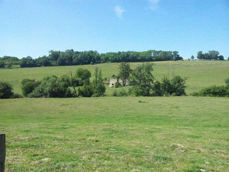 Vallée de la Roanne.