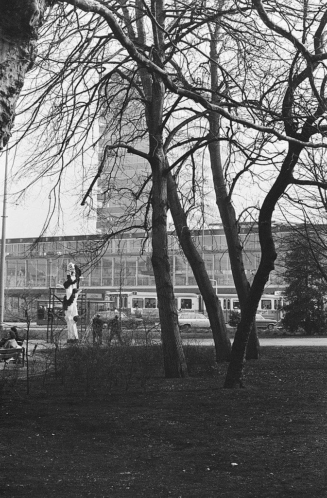 file van der linden bezig met zijn boom op de achtergrond