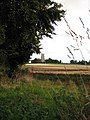 View from the footpath - geograph.org.uk - 978669.jpg