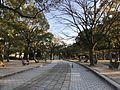 View in Hiroshima Peace Memorial Park 2.jpg