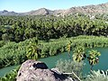 View over Oasis - Mulege - Baja California Sur - Mexico - 02 (23950075371).jpg