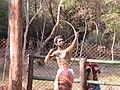 Views from Cauvery Nisargadhama (4).jpg