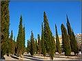 Vilamoura (Portugal) (15664311034).jpg