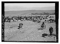 Village of Hasbaya, Habaga (above?) foot of Mt. Hermon LOC matpc.13127.jpg