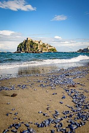Vista del Castello Aragonese dalla Spiaggia dei Pescatori.jpg