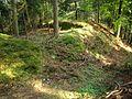 Waldburg1.jpg