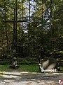 Warszawa, Pomnik ofiar katastrofy samolotu Ił-62M SP-LBG Tadeusz Kościuszko - fotopolska.eu (245090).jpg