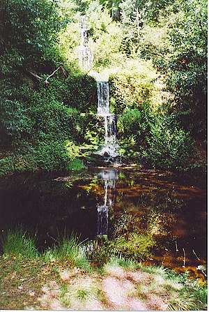 Wotton, Surrey - Image: Waterfall, Upper Tilling Valley. geograph.org.uk 136653