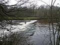 Weir on the River Derwent - geograph.org.uk - 742944.jpg