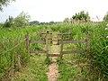 Wherryman's Way - path through reeds - geograph.org.uk - 1358355.jpg