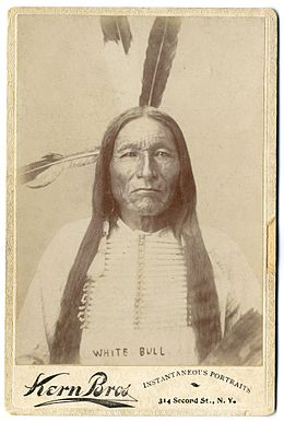 White Bull by Kern Bros, 1880s.jpg