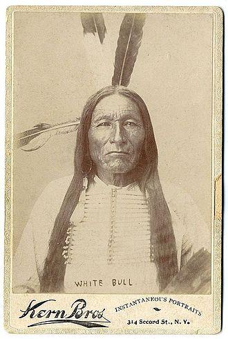 White Bull - Image: White Bull by Kern Bros, 1880s