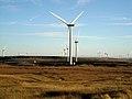 Whitelee Windfarm - geograph.org.uk - 1581478.jpg
