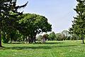 Wiener Zentralfriedhof - Park der Ruhe und der Kraft.jpg