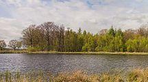 Wijnjeterper Schar, Natura 2000-gebied provincie Friesland 013.jpg