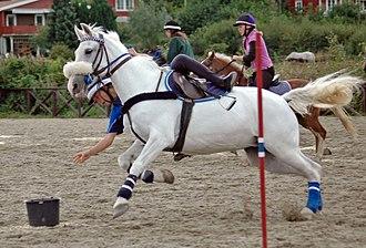 Mounted games - Image: Windsor Castle