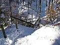 Winterwanderung, Wolfratshausen, 12 - panoramio.jpg