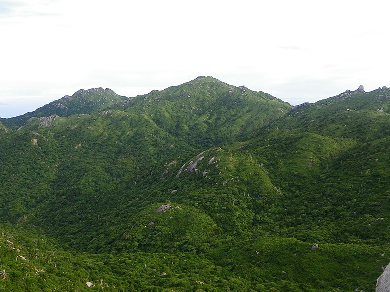 Yaku 3 mountains