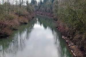 Yamhill River - Yamhill River at Dayton