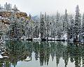 Yosemite High Country Morning, 2015 (28513211214).jpg