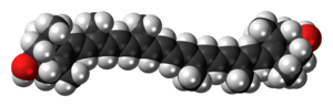 Zeaxanthin molecule spacefill.png