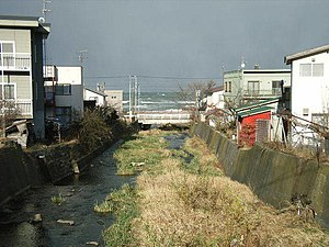 Zenibako River - River Mouse and the Sea of Japan (2004)