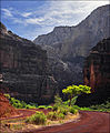Zion National Park—Zion-Mount Carmel Highway.jpg