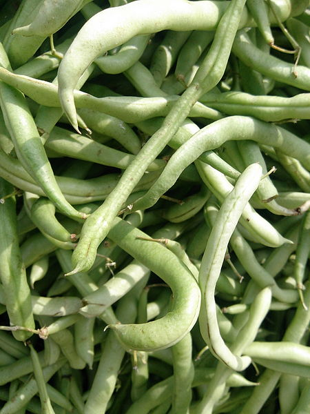 "File:""Beans of Salem"".jpg"