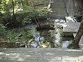 Κοιλάδα Τεμπών - Αγία Παρασκευή - Προαύλιος χώρος 1.jpg