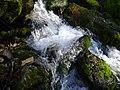 Весняний потік.jpg