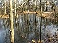 Дача Чернова, пруды03.jpg