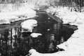 Зима в Гилевской роще (1).jpg