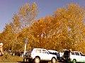 Осень на саянской - panoramio.jpg