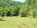 Планина Озрен (8).jpg