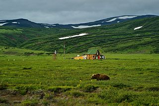 Kamchatka–Kurile meadows and sparse forests
