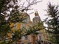 Свято-Вознесенский собор 2012 2.jpg