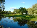 Став в саду село Тристень.jpg