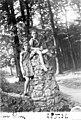 ביער אלם 1931 Elm - iאילנה מיכאליi btm6565.jpeg