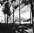 חגיגות היובל (25 שנה) לקיבוץ עיר חרוד-ZKlugerPhotos-00132oj-09071706851358c0.jpg