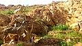 پارک آبشار، مهدی شهر، استان سمنان، Iran - panoramio (1).jpg