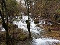 九寨沟 Jiuzhaigou National Park - panoramio (4).jpg
