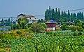 常德农村 - panoramio.jpg